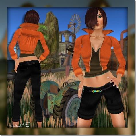swanson orange2