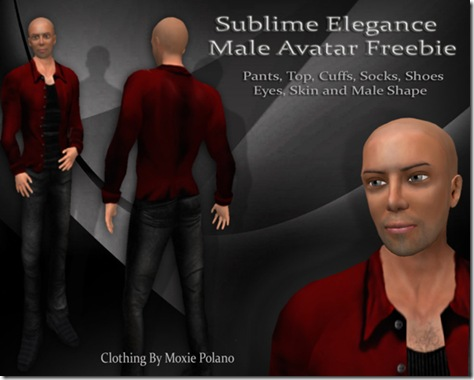 sublime-elegance-male-free