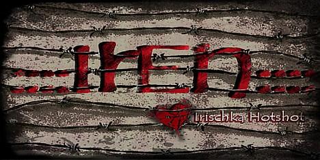 ____IrEn____Logo1