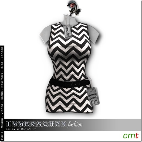 Mesh-Hanger-Belted-Dress-Zack-bw-MP