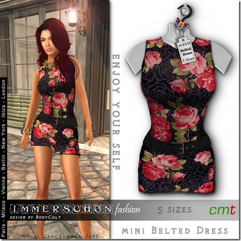 Mesh-Hanger-Belted-Dress-Flowers2-roses-MP